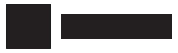 9brainz logo